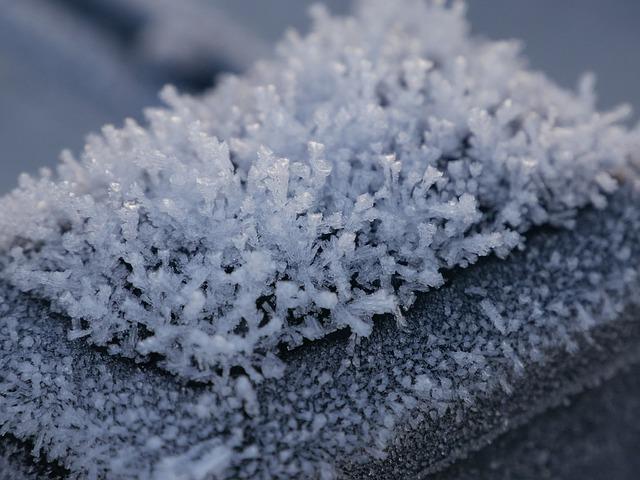 Príroda v zime.jpg